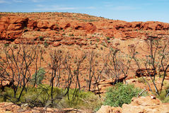 Beehive domes across Kings Canyon. View to beehive domes across Kings Canyon Royalty Free Stock Photography