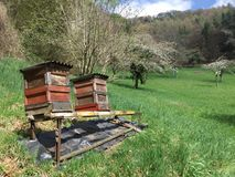 Beehive on an idyllic landscape Royalty Free Stock Image