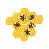 Beehive illustration. Honey bees and honeycomb Royalty Free Stock Photography