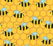 Beehive seamless pattern Royalty Free Stock Photos