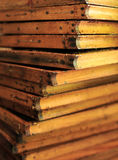 Beehive wax frames Stock Image