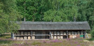 Beehive,Wilseder Berg,Lueneburg Heath,Lower Saxony,Germany Royalty Free Stock Photos