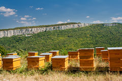 Beehives Royalty Free Stock Images