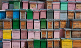Beehives. A colourful collection of beehives Stock Photo