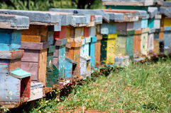 Beehives Stock Image