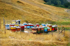 Beehives. This beehives are located in the valley bellow Bjelasica Mountain, Montenegro royalty free stock photography