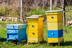 beehives Imagens de Stock Royalty Free