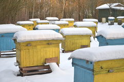 Beehives in apiary covered with snow Stock Photo
