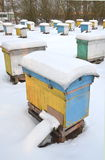 Beehives in apiary covered with snow Royalty Free Stock Photography