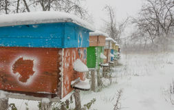 Beehives in apiary covered with snow in wintertime Stock Images