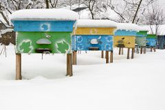 Beehives in apiary covered with snow in wintertime. Stock Photo