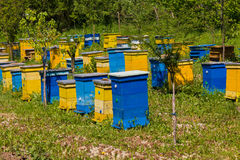 Beehives Stock Images