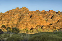 Beehives in Bungle Bungles National Park Stock Photography