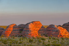 Beehives in Bungle Bungles National Park Royalty Free Stock Image