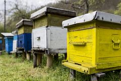 Beehives. Colorful beehives in the field stock photos