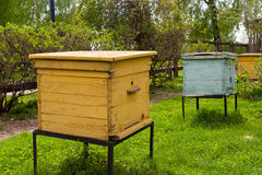 Beehives in the garden. At spring stock images