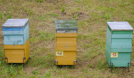 3 beehives on green grass Stock Photography