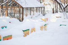 Free Beehives In Apiary Covered With Snow In Wintertime In The Frosty Dawn Or The Sunset. Colorful Beehives With Snowdrift On Roofs Stock Photo - 156710820