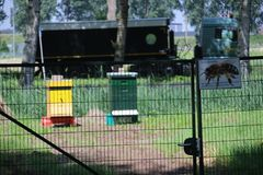 Beehives on land for natural beekeeping in nieuwerkerk aan den ijssel in the Netherlands. Beehives on land for natural beekeeping in nieuwerkerk aan den ijssel stock images
