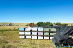 Beehives and Landscape Royalty Free Stock Image