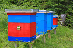 Beehives in a meadow Stock Images