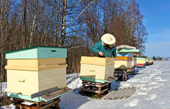 Apiarist in winter season. Royalty Free Stock Image