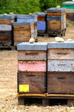 Beehives in Provence at France Royalty Free Stock Image