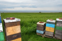Beehives by the sea Royalty Free Stock Images