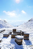 Beehives on the snow. Mountain region near Alamut, West Iran Royalty Free Stock Photography