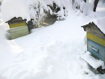 Beehives in snow. Beehives covered with snow in a garden, winter scene stock image