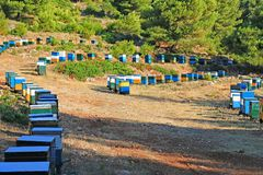 Beehives in a valley stock images