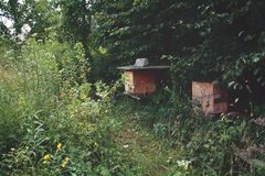 Beehives in wild garden. Beehives ina natural, ecological garden Stock Photography