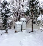 Beehives in Winter Covered in Snow in Back yard. With pine trees Stock Images