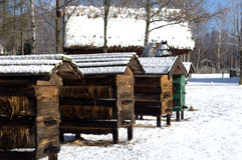 Beehouse Foto de Stock Royalty Free