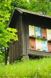 Beehouse Stock Photography
