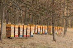 Beehouses photographie stock