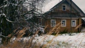 Beeinflussen des trockenen Grases gegen altes Holzhaus stock footage