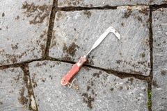Beeing de joints nettoyé avec un sarcloir de fente Image stock