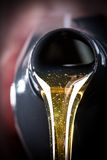 Beeing do óleo de motor derramado Fotografia de Stock Royalty Free