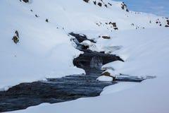 Beek in de sneeuw in de hooglanden van IJsland stock foto