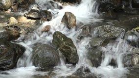 Beek die onder stenen stromen stock videobeelden