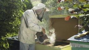 Beekeeper в защитной вуали и шляпа окуривают крапивницу пчелы с курильщиком крапивницы сток-видео