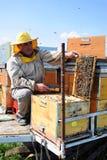 Beekeeper и его передвижные ульи Стоковое Изображение RF