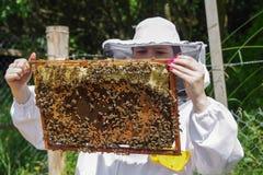 Beekeeper и ульи Стоковые Фото