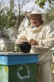 Beekeeper работает с пчелами и ульями на пасеке Стоковые Изображения