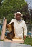 Beekeeper работает с пчелами и ульями на пасеке Стоковое Фото
