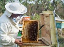 Beekeeper работает с пчелами и ульями на пасеке Стоковые Фото