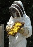 Beekeeper royalty free stock photography
