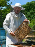 Beekeeper 27 Royalty Free Stock Image