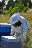 beekeeper Immagine Stock Libera da Diritti